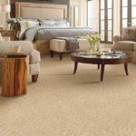 Residential & Commercial Carpet